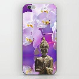 Buddha 12 iPhone Skin