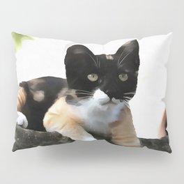 Just Chillin Tricolor Cat Pillow Sham