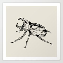 Rhinoceros Beetle Art Print