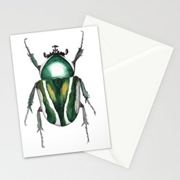Green Bug Stationery Cards
