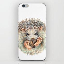 Hedgehog ball iPhone Skin