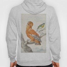 Two Exotic Birds - Vintage Tropical Decor Hoody