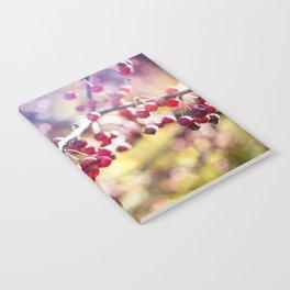 Jewels Notebook