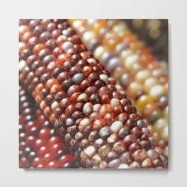 Indian Corn -Autumn Fall Decor Metal Print