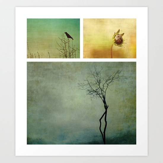 Triptych ~ Nature Art Print