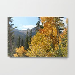 Autumn in the Rocky Mountains at Diamond Lake Trail, Eldora Colorado Metal Print