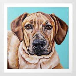 Kovu the Dog's pet portrait Art Print