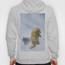 polar bear cub Hoody