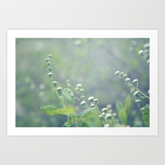 bokeh flowers Art Print