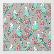 Budgie Birds With Blossom Flowers on Grey Canvas Print