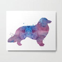 Longhaired dachshund Metal Print