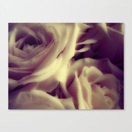 {English Rose} Canvas Print
