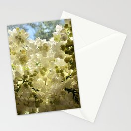 White Lilacs Stationery Cards