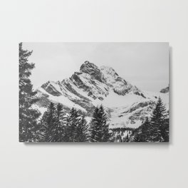 black and white like forest and snow Metal Print