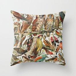 Adolphe Millot - Oiseaux espèces utiles 02 - French vintage ornithology poster Throw Pillow