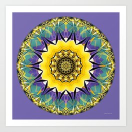 Mandalas of Healing and Awakening 5 Art Print
