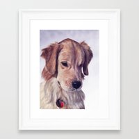 golden retriever Framed Art Prints featuring Golden Retriever by Heather Amber