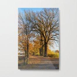 Autumn in Dolina Baryczy Metal Print