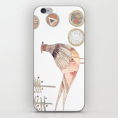 Decorative pheasant iPhone & iPod Skin