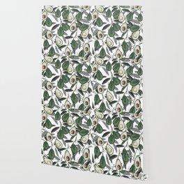 Ripe Avocado Wallpaper