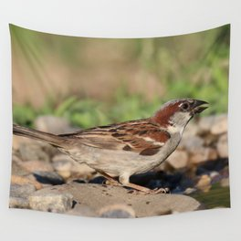 sparrow ready to drink water, but is cautious Wall Tapestry