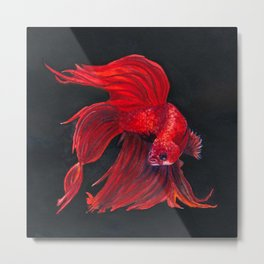 Red Siamese Fighting Fish Metal Print