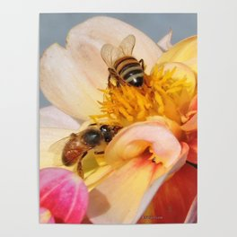 Honeybees at Work Poster