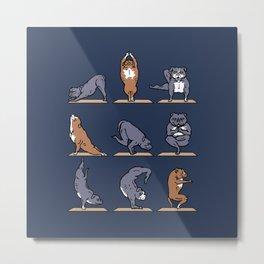 American Pit Bull Terrier Yoga Metal Print