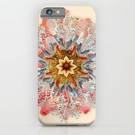 Ernst Haeckel Spiraling iPhone Case