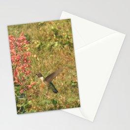 Hummingbird flower 28 Stationery Cards