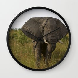 Elephant in the Wild Wall Clock