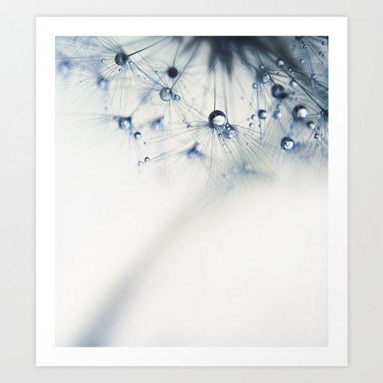 dandelion star Art Print