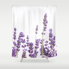 Purple Lavender #4 #decor #art #society6 Shower Curtain