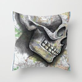 ALBANY, NEW YORK Throw Pillow