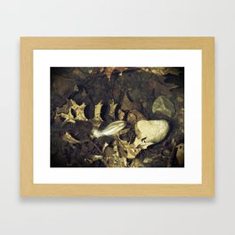 The Lone Feather Framed Art Print