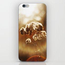 Autumnal Glow iPhone Skin
