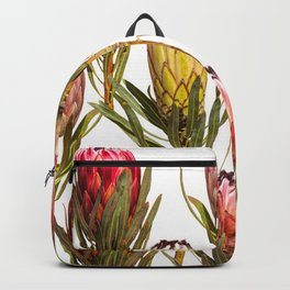 4 Proteas Backpack