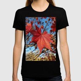 Maple leaf center stage T-shirt