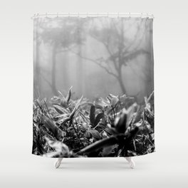 Foggy Foliage / Hallasan Shower Curtain