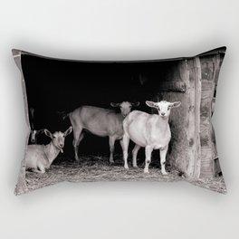 Beekman Barn Square Rectangular Pillow