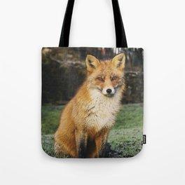Beautiful Sitting Fox Tote Bag