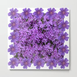 WHITE  LILAC PURPLE SPRING PHLOX FLOWERS GARDEN Metal Print