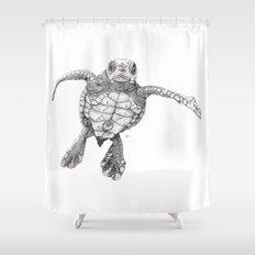 Chelonioidea (the turtle) Shower Curtain