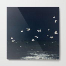 Sea - Evening Flight Metal Print