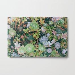suucu garden Metal Print