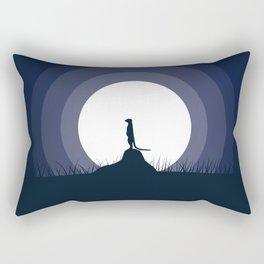 Looking For Rectangular Pillow