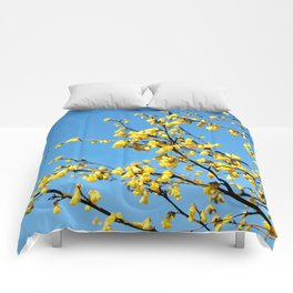 boom boom bloom Comforters