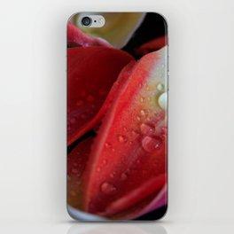 Tulip Embers iPhone Skin