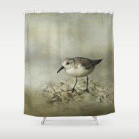 Sanderling Shower Curtain