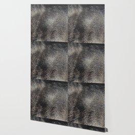 CAT FUR Wallpaper